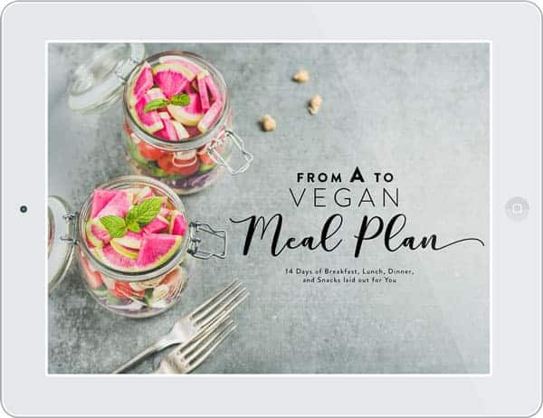 From A to Vegan Meal Plane-book cover photo.