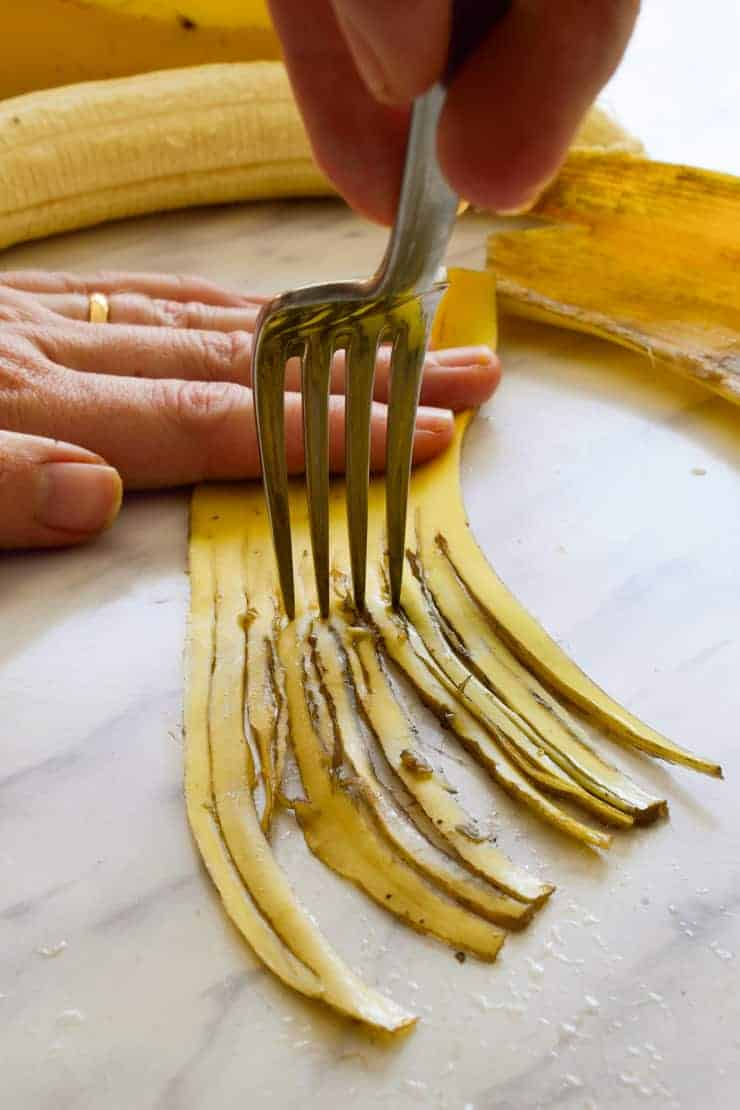 Shredding the banana peel with a fork to make vegan pulled pork sandwiches.